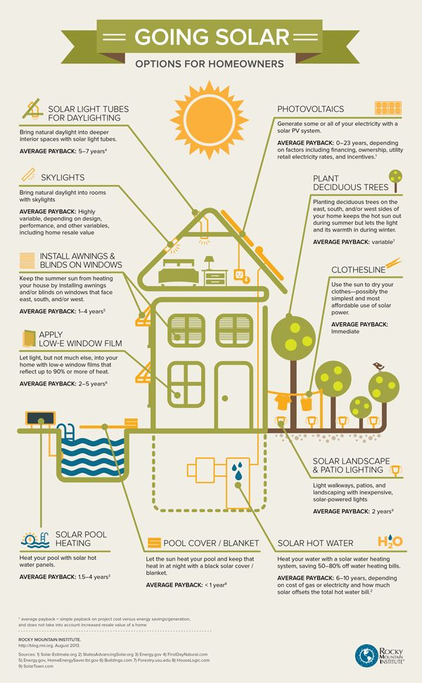 Options for homeowners to go solar infographic