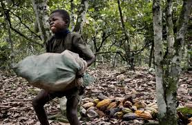cocoa child labour