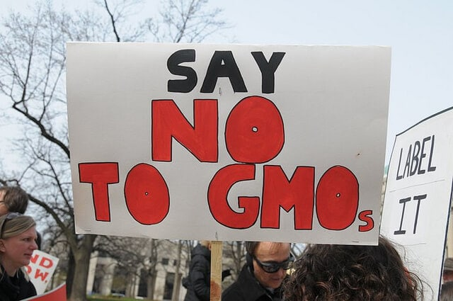 genetically modified food