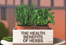 health benefits of herbs banner