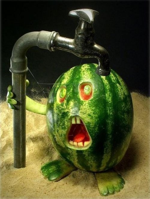 watermelon carved face